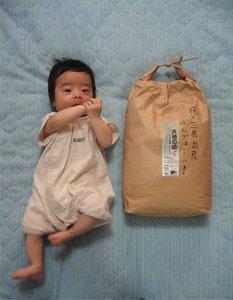 米袋とあまり変わらない大きさのマサヤ